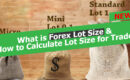 What is forex lot size and how to calculate lot size in forex accurately