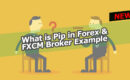 What is pip in Forex and how to find it